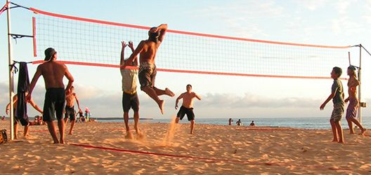 Nexcourt Volleyball